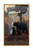 PAL 50 Yellowstone Black Bear Family