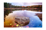 Rock in a Pond  Acadia National Park  Maine