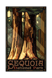Sequoia National Park Giant Trees Pal 793 Reproduction d'art par Paul A Lanquist