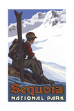 Sequoia National Park High Mountain Skier Pal 1221