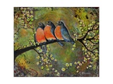 Birds Robins Family Portrait