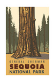 General Sherman- Sequoia National Park PAL-1230