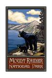 Mount Rainier National Park Black Bear and Cub
