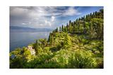 Terraced Hillside at the Coast  Portofino  Italy
