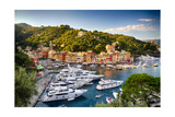 Summer Afternoon in Portofino  Italy