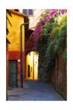 Colorful Alley in Portofino