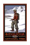 Sequoia National Park Climber Pal 1217