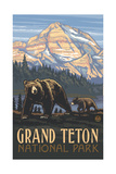 Grizzly and Cub Grand Teton Pal 642