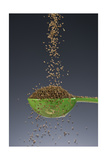 1 Tablespoon Celery Seed