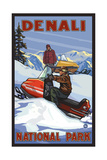 Denali National Park SMB Snowmobiliers pal 3052