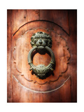 Lion Face Door Knocker in Florence