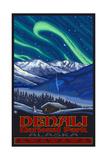 Denali NP Northern Lights Pal 3029