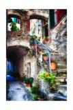 Rustic Alley In Corniglia  Cinque Terre  Italy