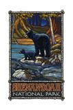 Shenandoah National Park Black Bears Pal 2698