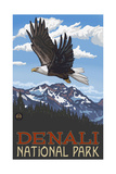 Denali National Park Soaring Eagle Pal 2181