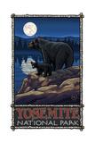 Yosemite National Park BLMH Black Bears
