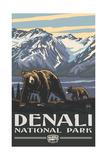 Denali National Park Grizzlies Pal 3031
