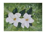 Mystical Magnolias II