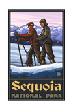 Sequoia Natiional Park Cross Country Skiers 1218