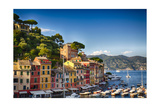 Colorful Harbor Houses in Portofino  Liguria  Italy