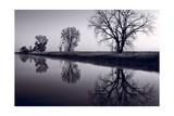 Foggy Morn BW