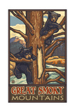 Great Smoky Mountains Black Bears In Tree Pal 2605