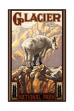 Glacier National Park Mountain Goat Pal 453