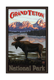 Grand Teton Moose Pal 044