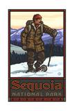 Sequoia National Park Snowshoer PAL-1219 SST