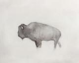 Buffalo (right) Reproduction d'art par Jacqueline Neuwirth