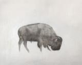Buffalo (left) Reproduction d'art par Jacqueline Neuwirth