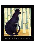 Spirit Of Serenity 1