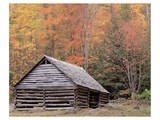 Smokies Roaring Fork Fall Cabin