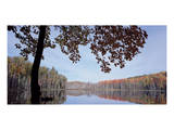 Council Lake Fall Color