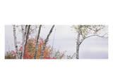 Vermont Groton Lake 3