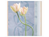 Tulip and Blue Tapestry I