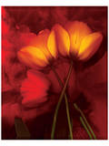 Tulip Fiesta in Red and Yellow I