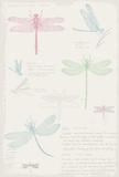Dragonfly Diary