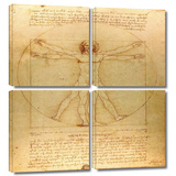 Vitruvian Man 4 piece gallery-wrapped canvas