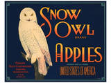Snow Owl Brand Apples