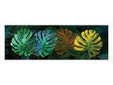 Tropical Triptych Monstera Reproduction d'art par Melinda Bradshaw