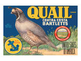 Quail Brand Contra Costa Bartletts