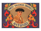 Antonio Sweet Valencia Oranges
