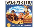 Gasparilla Citrus  Florida