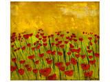 Sunny Poppy Field II