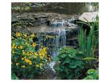 Garden Cascade