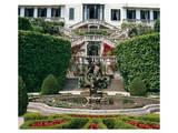Somptuous Garden I