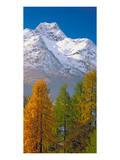 Denali Mount Mckinley Alaska
