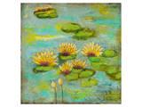 Lotus Lake I