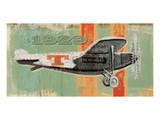 Vintage Plane IV